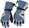 DSG Arctic Appeal Glove by Divas Snow Gear